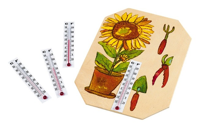 Thermometers - Set/10